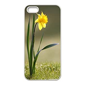 Bloomingbluerose Daffodil & Flower IPhone 5,5S Case Single Daffodil Hardshell For Girls, Case For Iphone 5s For Men Hardshell For Girls [White] BY BYC DESIGNS