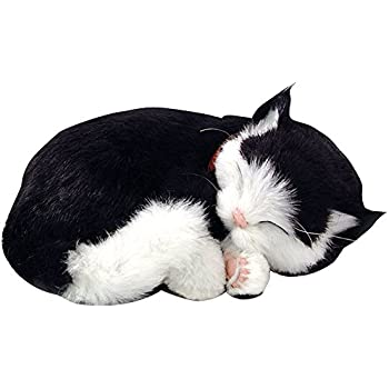 Breathing Cat Toy Amazon