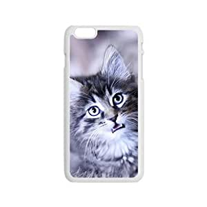 Cool Christmas Cat Phone Case for Iphone 6