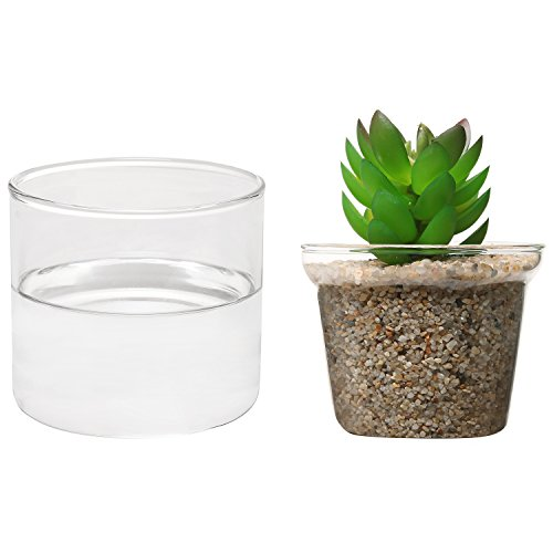 Blooming Autumn Small Frosted Glass Vase-Burgundy $ $ FREE. Store Pickup you'll find a vast selection of flower pots, vases, and other types of settings for your blooming beauties. Recreate the hanging gardens in your home with a Featuring flower pots, vases, pottery and other floral containers for holding garden or display.
