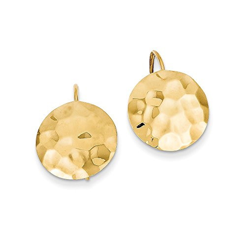 14K Gold Hammered Circle Disc Earrings (0.83 in x 0.55 in) Disc Kidney Wire Earrings