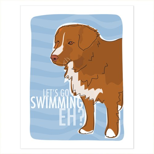 Nova Scotia Duck Tolling Retriever Art - Lets Go Swimming Eh - Pop Doggie Dog Art Poster Sign Prints with Funny Sayings - 5 by 7 ()