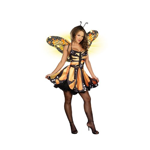 Monarch Butterfly Costume Adult - Dreamgirl Women's Monarch Fairy Dress, Black/Orange/Yellow,