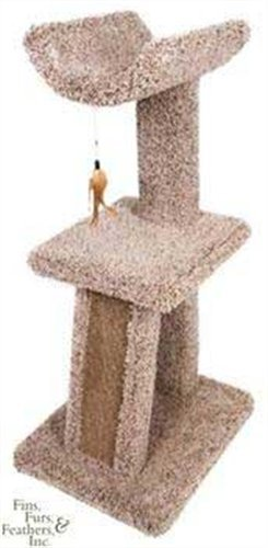 - Ware Manufacturing Kitty Cradle and Corrugated Scratch Post