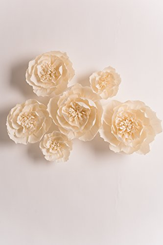 KEY-SPRING-Paper-Flower-Decorations-Large-Crepe-Paper-Flowers-Handcrafted-Flowers-Giant-Paper-Flowers-Beige-Set-of-6-for-Wedding-Backdrop-Nursery-Wall-Decorations-Bridal-Shower-Baby-Shower