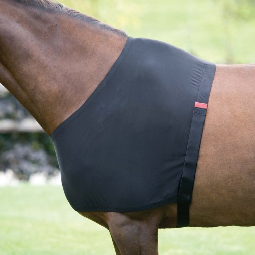 Shires Ant Rub Stretch Shoulder Guard - Size:XLarge Color:Black Blk Rub