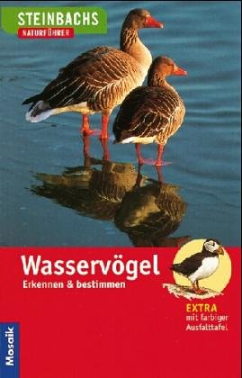 Wasservögel: Erkennen und Bestimmen