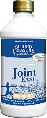 Buried Treasure Joint Ease Complete Comprehensive Nutritional Support Featuring Grape Seed Extract, MSM, Glucosamin, Curcumin in Liquid Vegetarian Safe Formulation 16 oz