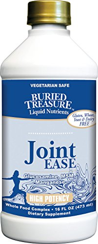 Buried Treasure Joint Ease Complete Comprehensive Nutritional Support featuring Grape Seed Extract, MSM, Glucosamin, Curcumin in Liquid Vegetarian Safe Formulation 16 oz (Regenasure Glucosamine)