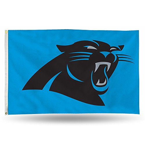 Rico NFL Carolina Panthers 3-Foot by 5-Foot Single Sided Banner Flag with Grommets]()