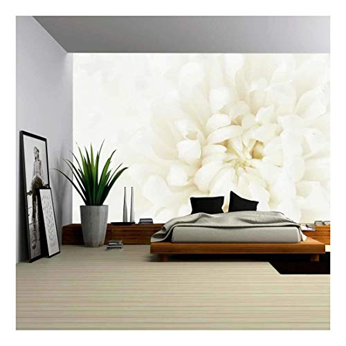 wall26 - Loseup of Tender White Chrysanthemum Flower - Removable Wall Mural | Self-Adhesive Large Wallpaper - 100x144 inches