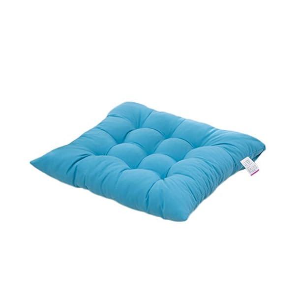 Worsendy Cuscino Sedia, Cuscini per Giardino, per Dentro e/o Fuori,40x40 cm,Disponibile in Tanti Colori Diversi,Cuscini… 1 spesavip