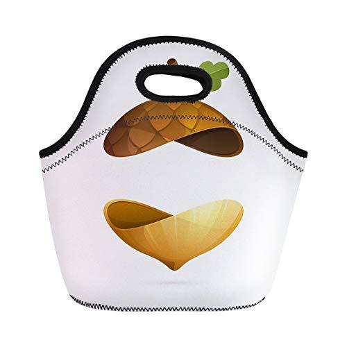 Semtomn Lunch Bags Brown Fruit Autumn Acorn Sphere Ecology for Presentation Labels Neoprene Lunch Bag Lunchbox Tote Bag Portable Picnic Bag Cooler - Knife Acorn Fruit