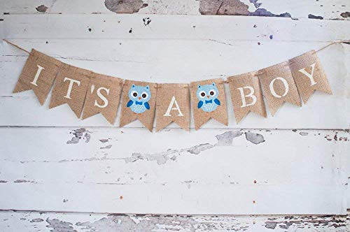 Owl It's A Boy Banner for Baby Shower