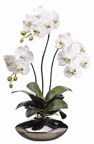 White Floral Pot - Silk Decor 31-Inch Phalaenopsis Plant, White/Green