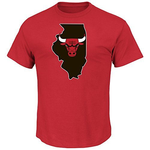 Majestic Dwyane Wade Chicago Bulls #3 NBA Men's Record Holder Player T-Shirt (Red, XX-Large)