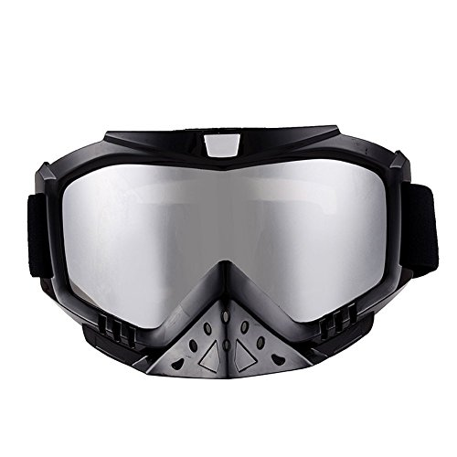 Adult Motorcycle Off-Road Dirt Bike Street Bike ATV&UTV Cruiser Adventure Touring Snowmobile Goggles Mask (Silver)