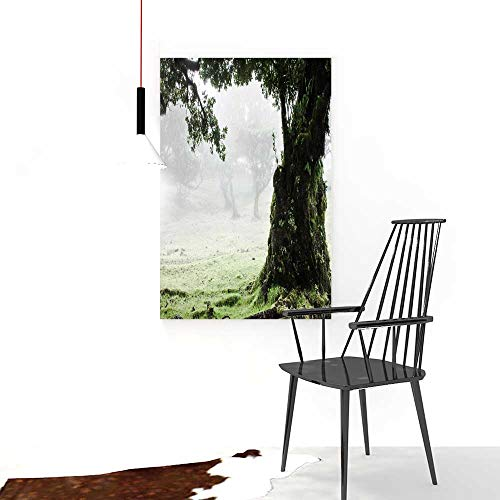Auraise-home Paintings of DecorativeFairy Forest Laurel Forest in Madeira Restaurant Bedroom Painting W20 x H40