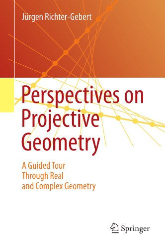 Download Perspectives on Projective Geometry Pdf