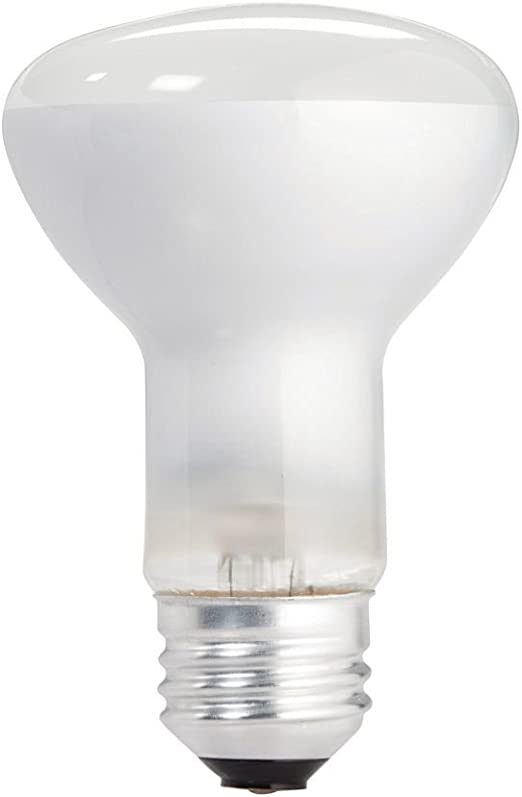 12-Pack Philips 223149 Duramax 45-Watt R20 Indoor Flood Light Bulb