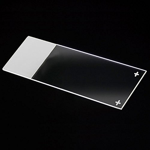 Globe Scientific Diamond 1358W White Glass Charged Microscope Slide  25 X 75Mm Size  Ground Edges  White Frosted  1 440 Slides