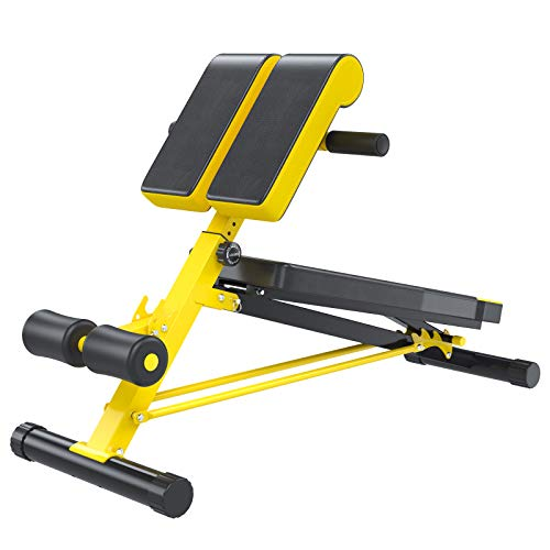 Soozier Folding Adjustable Hyper Extension Bench Dumbbell Weight Ab Multifunction Workout Press