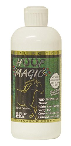 Healing Tree Products HUUF MAGIC-850 Huuf Magic Thrush Antiseptic, 16 oz Thrush Magic