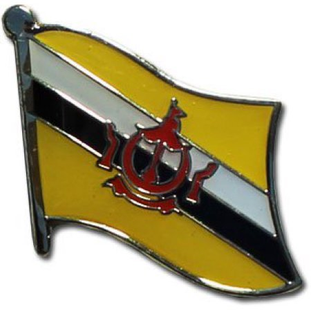 "Backwoods Barnaby Brunei Flag Lapel Pin/International Travel Pins Collections by (0.75"" x 0.75"")"