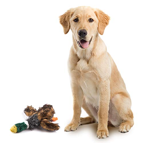 wangstar Pet Mallard Duck Dog Toy, Squeaky Dog Toy, Plush Puppy Dog Chew Toy for Small Medium Dogs (16.5'' Squeaky Duck)