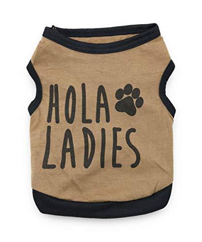 DroolingDog Adidog Dog Clothes Pet Dog Tracksuit for Small Clothes