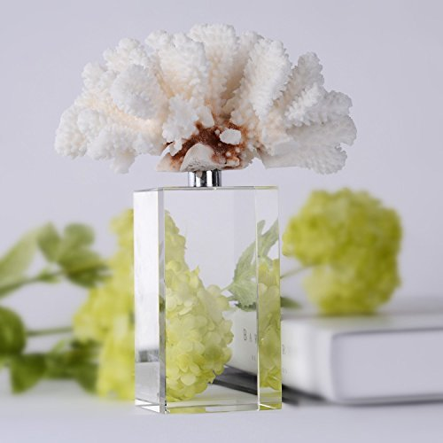 BRLIGHTING Coral Decoration, Simple White Coral Sculpture with Crystal Bases Tabletop Modern Decor Accents Home Office Collection Best Creative Gifts (L4.5 xW5 xH10, White)