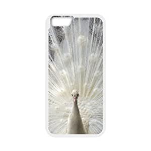 "WJHSSB Cover Shell Phone Case Peacock For iPhone 6 Plus (5.5"")"