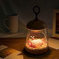 qiyanColorful Night Lights My Secret Garden Ambiance Light ...