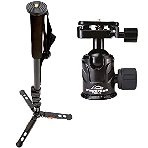 Davis & Sanford MONOPED64 Plus Monopod, Includes a PB-236-18 Powerball Dual Control Ballhead