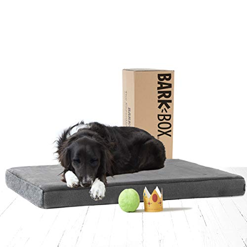 BarkBox Memory Foam Dog Bed | Plush Sofa Orthopedic Joint Relief | Machine Washable Cuddler with Removable Cover and Waterproof Lining | Removable Mattress for Crate or Travel | Includes Squeaker Toy