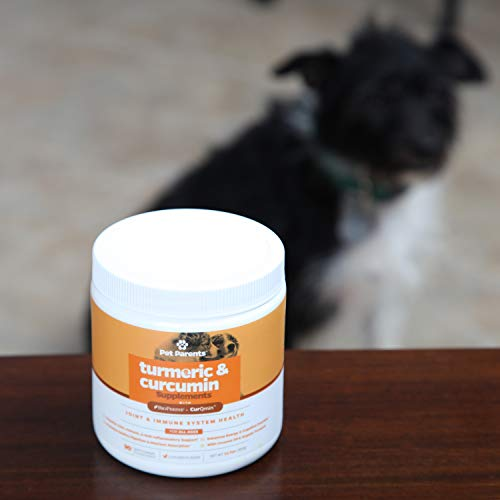Pet Parents USA Turmeric for Dogs 4g 90c – K9 Joint, Dog Joint & Dog Immune Support, Joint Pain Relief for Dogs, Dog Arthritis Pain Relief + Dog Aspirin with Curcumin, BioPerine + Dog Joint Supplement