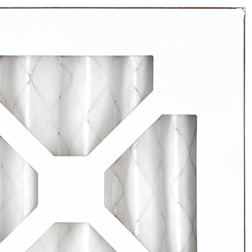 AIRx Filters Allergy 12x24x1 Air Filter MERV 11 AC Furnace Pleated Air Filter Replacement Box of 12, Made in the USA