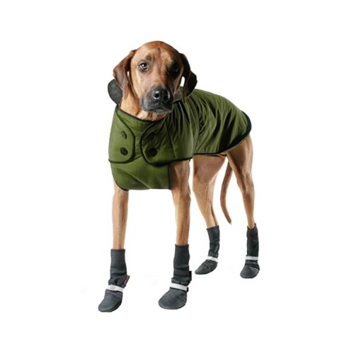 Muttluks 3-Layer Belted Winter Dog Coat, Size 12, Green