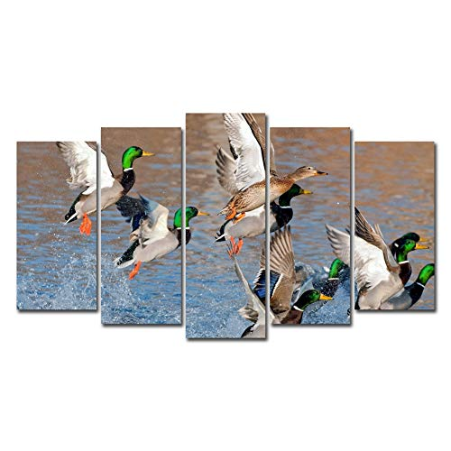 Horgan Art 5 Pieces Canvas Prints Wall Art - Wild Ducks Hunting Swimming Flying Over Water Picture - Animal Painting Artwork for Living Room Bedroom Home Decor (No Frame)