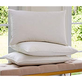 Amazon Com St Regis Hotels King Feather And Down Pillow