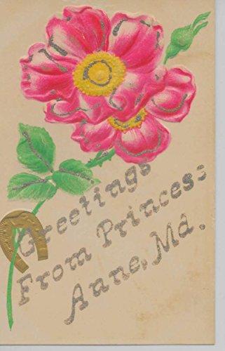 Horseshoe Glitter - Princess Anne Maryland quot;Greetings Fromquot; horseshoe glitter antique pc Z38019