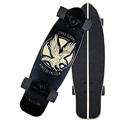 """B&S.LIN 27.5 """"x 8"""" Skateboard is a Versatile Skateboard That You can Ride Around and do Stunts with. Complete Assembled Cruiser Board Set.Best Bang for Your Buck(Matte) : Sports & Outdoors"""