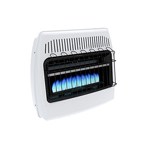 Blue Flame Kitchen: Dyna-Glo BF30NMDG 30,000 BTU Natural Gas Blue Flame Vent