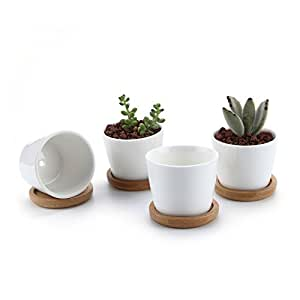 T4U 2.5 Inch Ceramic White Round Simple Design succulent Plant Pot/Cactus Plant Pot Flower Pot with bamboo tray/Container/Planter White Package 1 Pack of 4