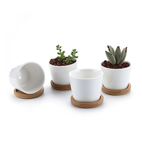 Round Ceramic (T4U 2.5 Inch Ceramic White Round Simple Design succulent Plant Pot/Cactus Plant Pot Flower Pot with bamboo tray/Container/Planter White Package 1 Pack of 4)