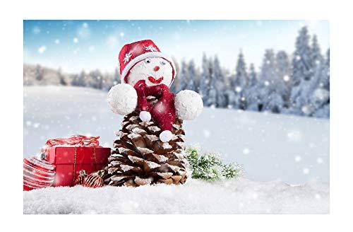 Pinecone Snowman - Brown Pinecone Snowman Decoration Snowflake Forest Happy New Year Vertical Stripe Small Door Mat, Door Mat Floor Mat Carpet Indoor/Outdoor/Front Door/Bathroom Mat Rubber Slip