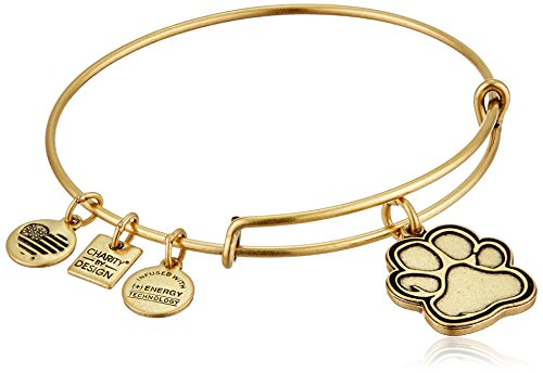 Alex and Ani Charity By Design Prints of Love Rafaelian Gold Bangle Bracelet - Gold Terrier Dog Charm