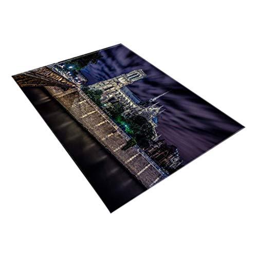 DFHDSF Area Rugs Notre Dame Photo Commemorative Comfortable Carpet Home Decor