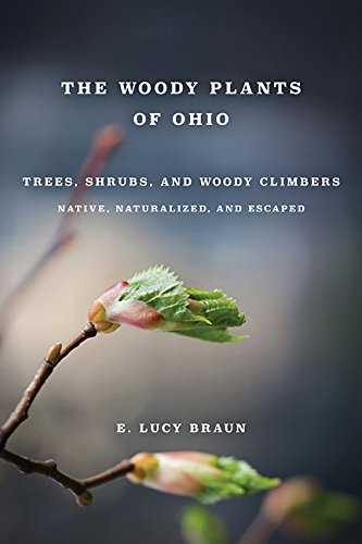 WOODY PLANTS OF OHIO: TREES, SHRUBS AND WOODY CLIMBERS NATIVE, by Ohio State University Press