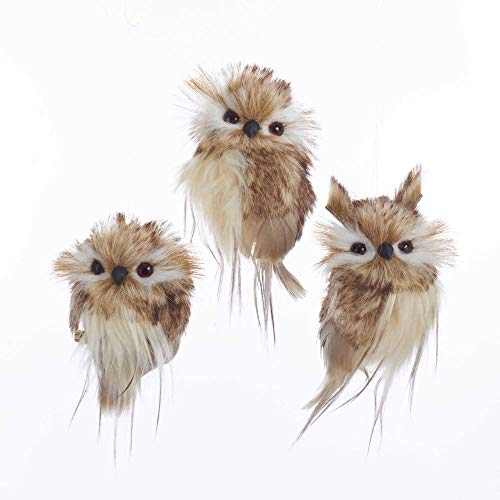 The Bridge Collection Fluffy Owl Ornaments, Set of 3 Assorted (Brown) (Owl Feathered White Ornaments)